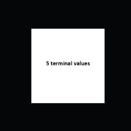 5 terminal values